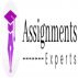 Assignments Experts UK